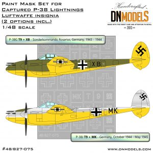 Captured P-38 Lightnings - Luftwaffe Insignia Paint Mask Set 1/48 dn models masks for scale models